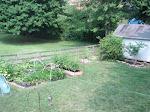 2010 Garden View