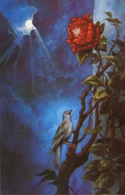 the nightngale and the rose