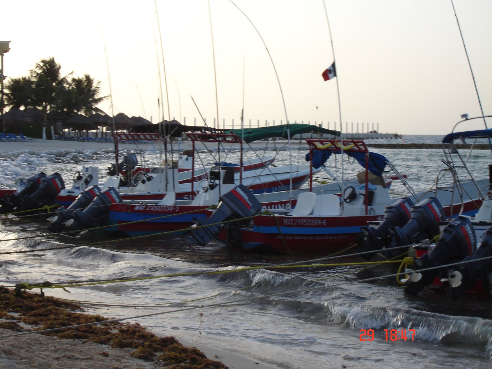 Dive in mexico fishing trips in the mexican caribbean for Playa del carmen fishing charters
