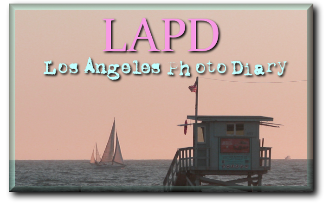 LAPD ~ Los Angeles Photo Diary