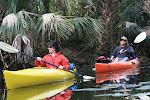 Discover Florida!