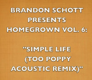 Brandon Schott - Homegrown Recordings Vol. 6