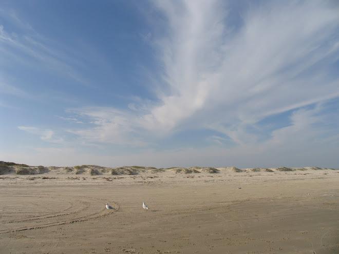 Corpus Christi, Texas sand dune and sky