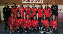 Equipo 2010/2011