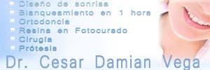 Dr. Cesar Damian Vega