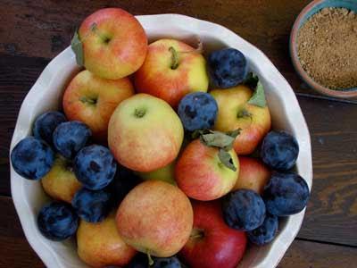 Gluten Free Photo Contest - November Winners! Image