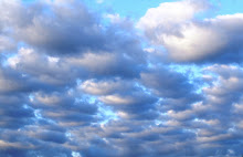 cielo espressivo