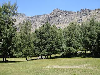 PirilamposRafael132.jpg