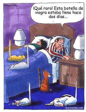 Humor Grafico.. Carcajeadas.blogspot.com.9