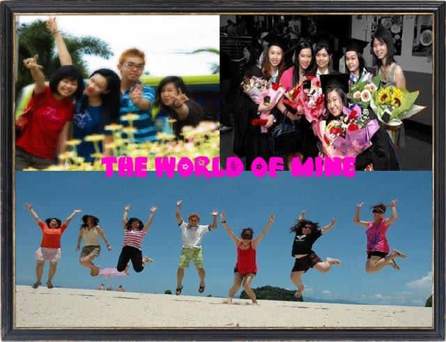The World of Mine