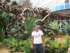 Museu de Geociências USP