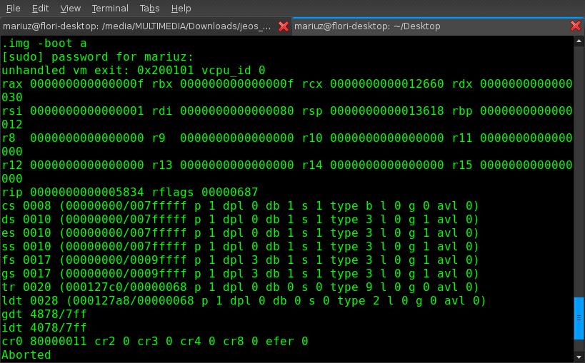[kvm-crash-with-linux0.0.1.png+]