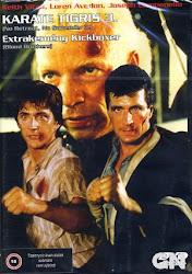 Baixar Filme Irmãos Kickboxers (+ Legenda)