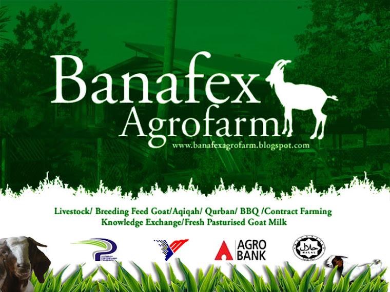 Banafex Agrofarm