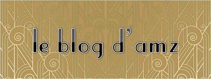 le blog d'amz