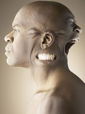 Unbelievable Photo 3Faces