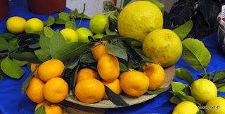 Лимонн комнатный разные сорта
