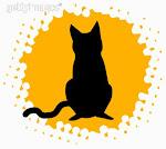 FIV Imunodeficiência Felina