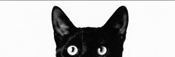sophisti-Cat