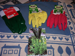 Little's Mud Gloves