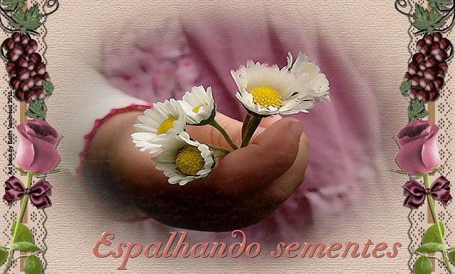 Espalhando Sementes