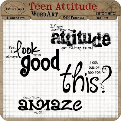 attitude quotes with pictures. Attitude Quotes Images.