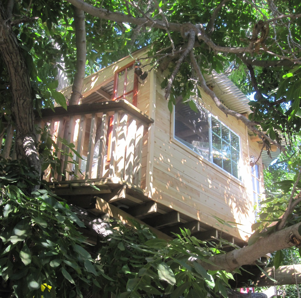zucchero architects tree house built in an old walnut