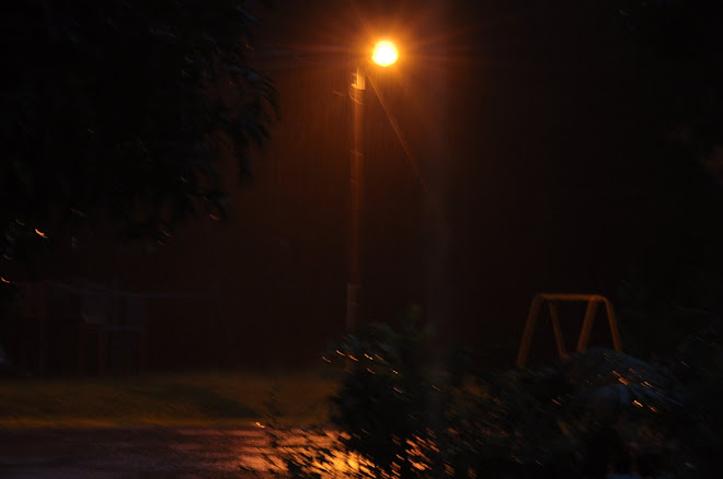 Rainy Night Playground
