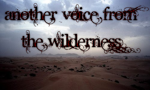 Another Voice from the Wilderness