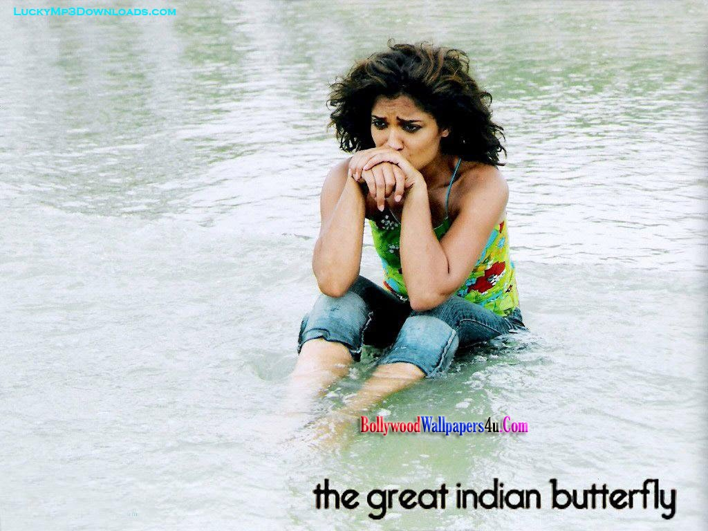 voksen hindi film sexleketøy butterfly