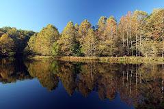 A Howard County Autumn