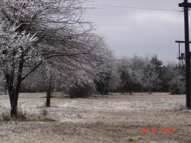 Texas Ice Storm January 2009