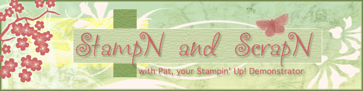 StampN and ScrapN with Pat
