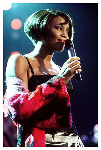 whitney houston vocal range photo