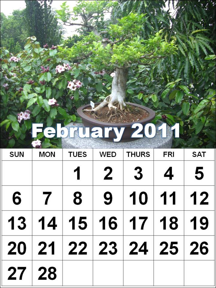 Beautiful February 2011 Image : Basic calendar with small boxes for each