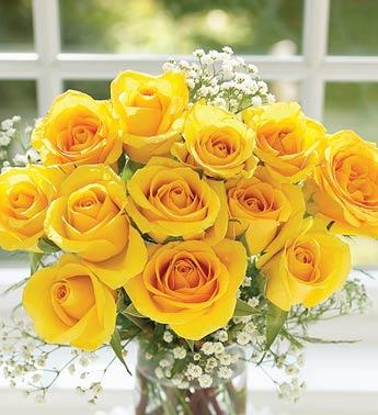 Irina si gadis pear irina berkongsi meaning of roses maksud bunga yellow rose joy gladness freedom mightylinksfo