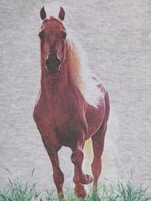 EMM (pronounced EdoubleM): STELLA McCARTNEY Horse Print ...