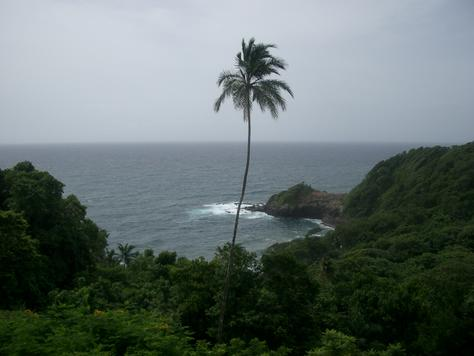 View from room, Dominica
