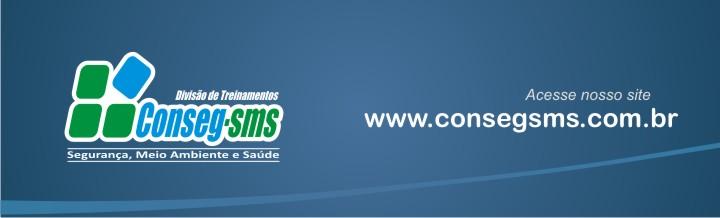 CONSEG-SMS CONSULTORIA E TREINAMENTOS