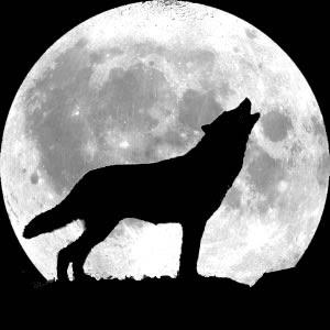 A Expedição - Página 4 Lobo+uivando+pra+lua