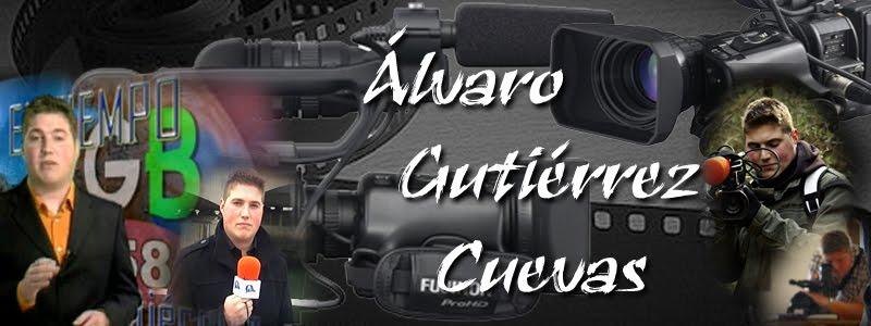 Curriculum Vitae Álvaro Gutiérrez Cuevas