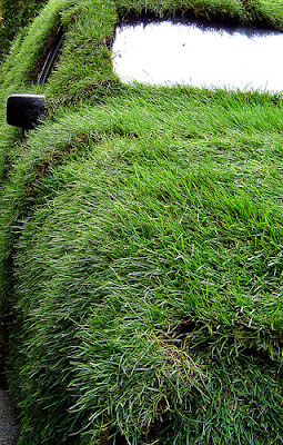 15 Cool Grass Covered Cars (16) 3