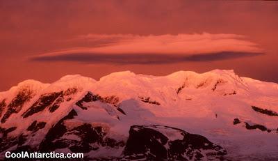 Cool Antarctica (5)  4