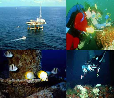 Artificial Reefs: Oil & Gas platforms 1