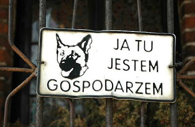 Funny Dog Signs (14) 13