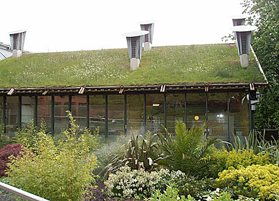 Cool and Creative Green Roofs (21)  14