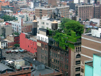 Cool and Creative Green Roofs (21) 12