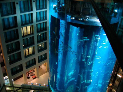 cylindrical acrylic glass aquarium