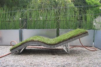 Cool and Creative Grass Creations (25) 16