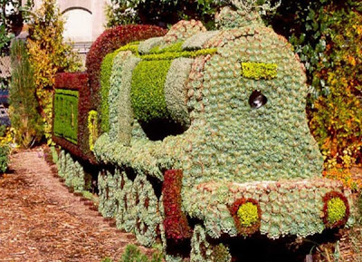 train shaped bushes